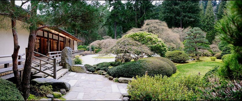 First step to starting your japanese garden landscape for Japanese garden designs landscaping