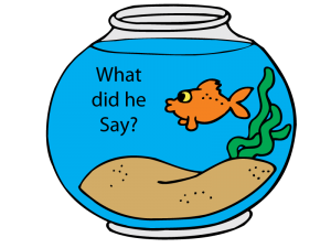 Goldfish-what-did-he-say-300x225