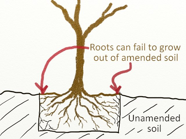 Tree planting mistake - Amending soil