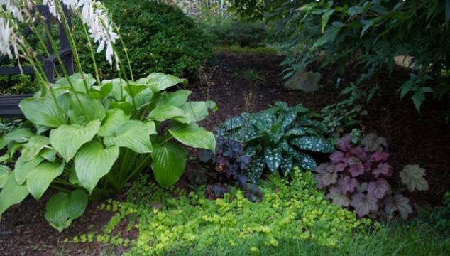 Garden texture mixed textures shown in color