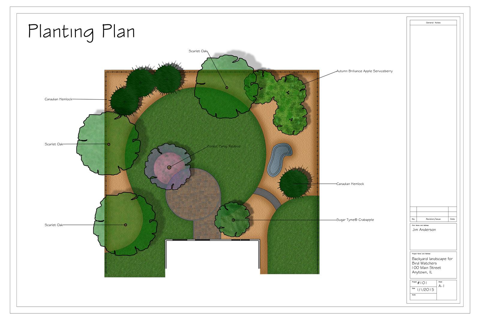 Landscape design for birds Canadian Hemlock added