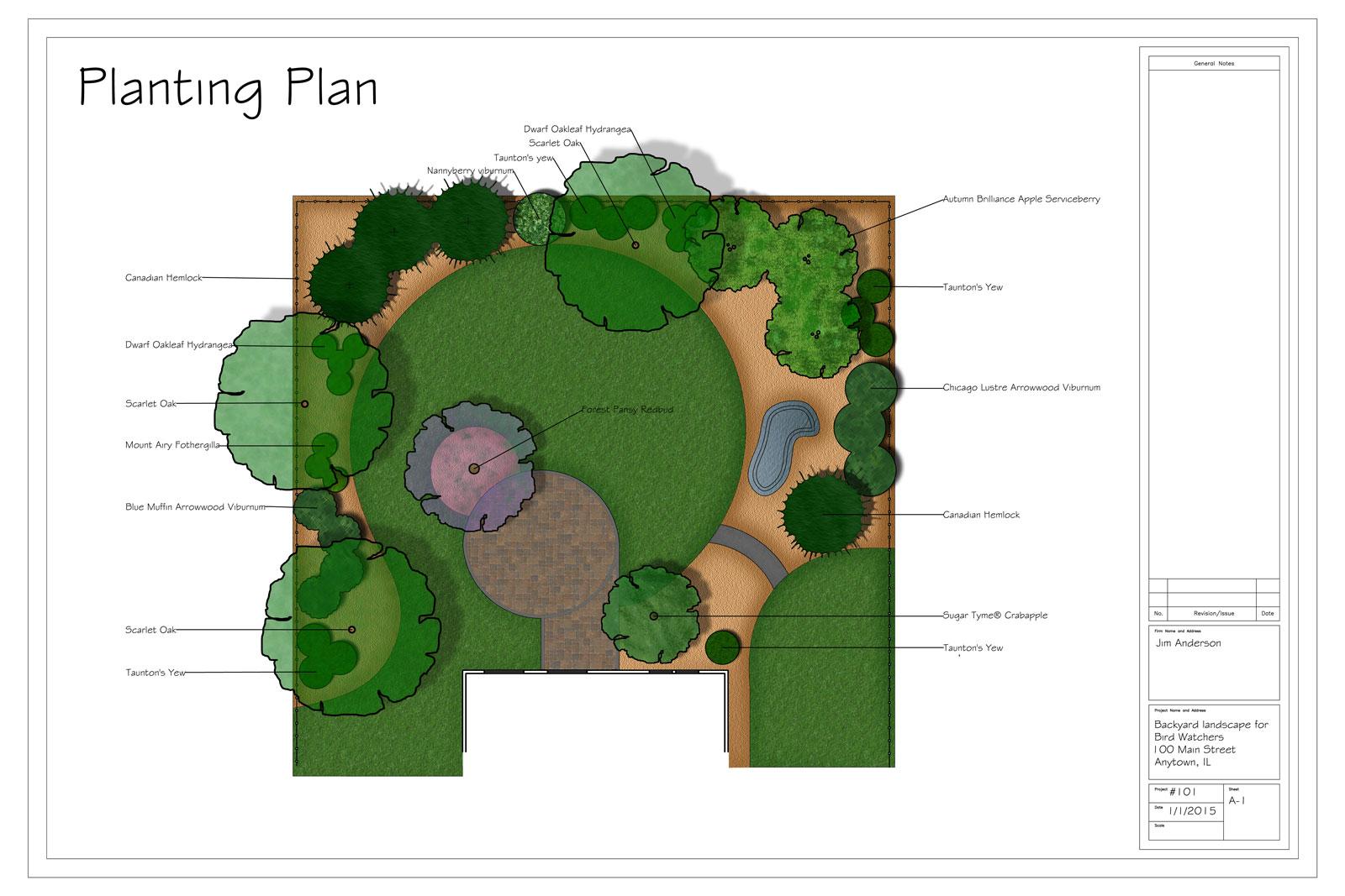 Shrub groups added to backyard design for the birds