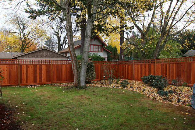 fence certainly does not have to be this detailed or stained to