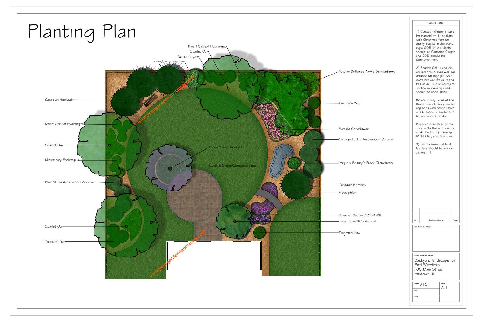 Backyard landscape design to attract birds