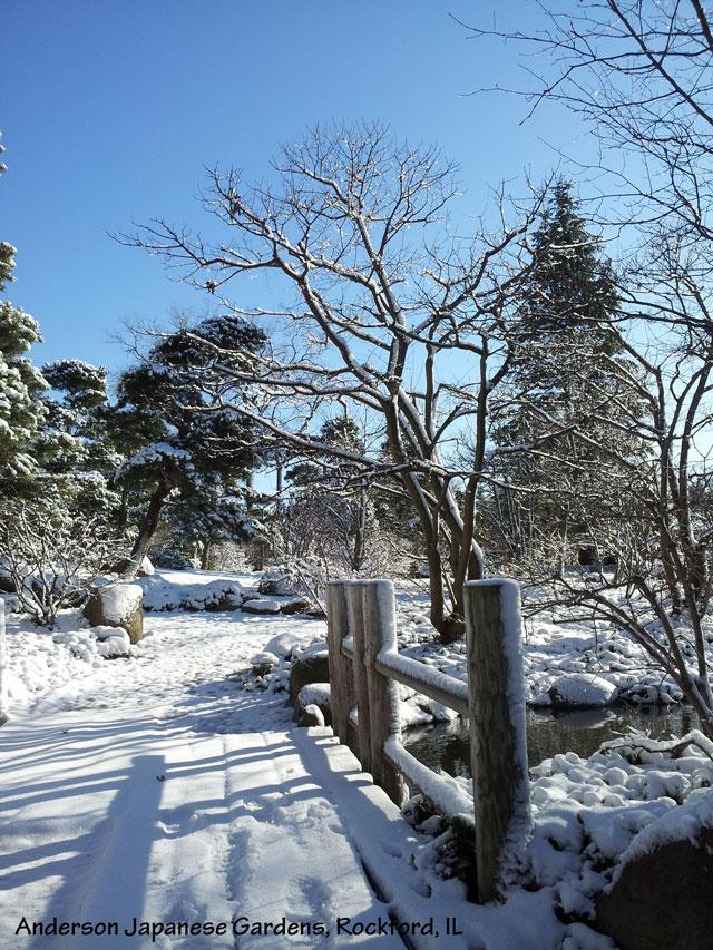 Winter garden photos