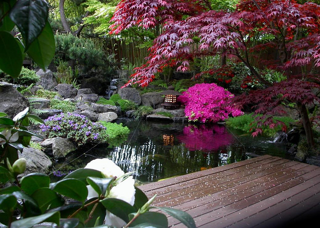 First step to starting your japanese garden landscape for Japanese style pond