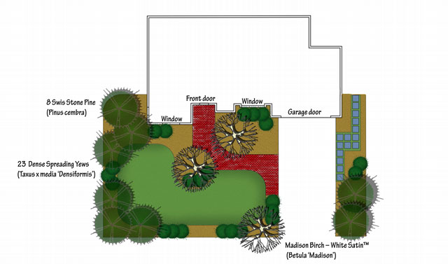 Winter interest front yard design yews added.