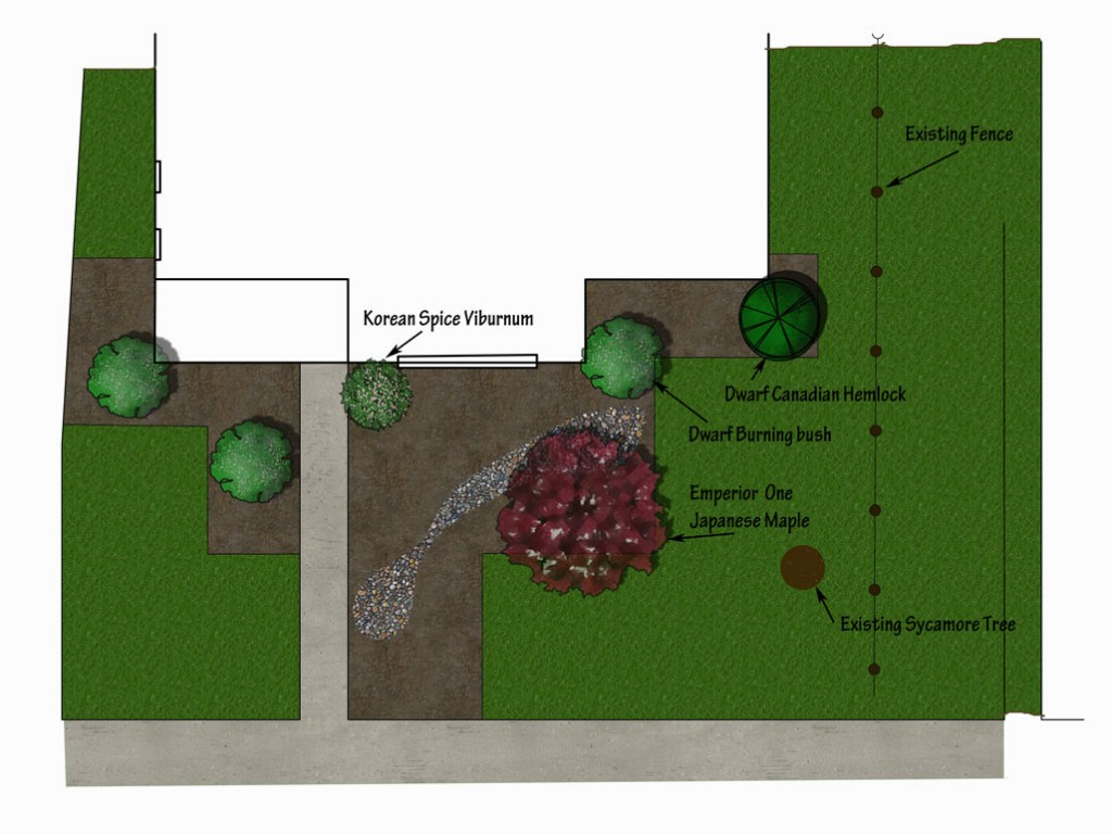 Front yard design for walnuts with shrubs to soften corners added