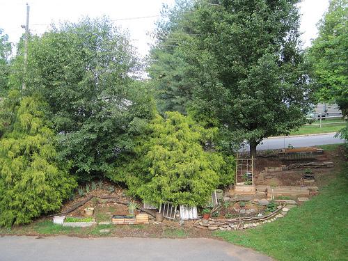 hillside garden photo