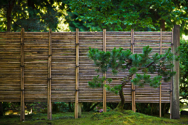 Enclose your garden with a Bamboo fence