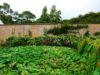 Enclose your garden with a Brick wall