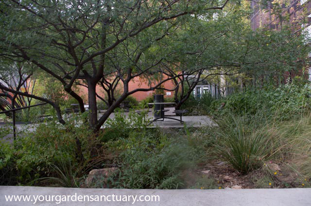 Landscaping for your grandchildren Sustainable gardens
