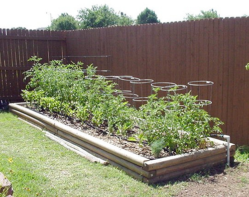 Landscape wish lists often include vegetable gardens
