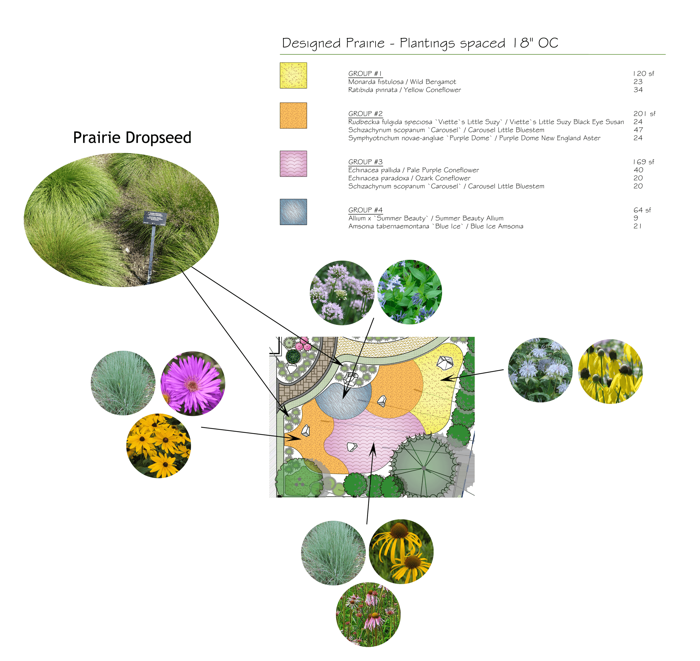 Naturalistic front yard planting-plan