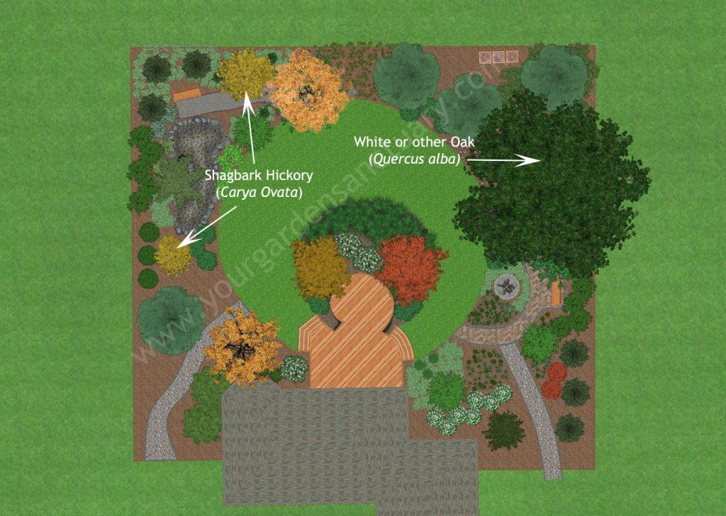 Shade Trees for Native Backyard