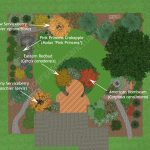 Trees for an Ecological Backyard
