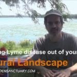 Keeping Lyme disease out of our Landscape