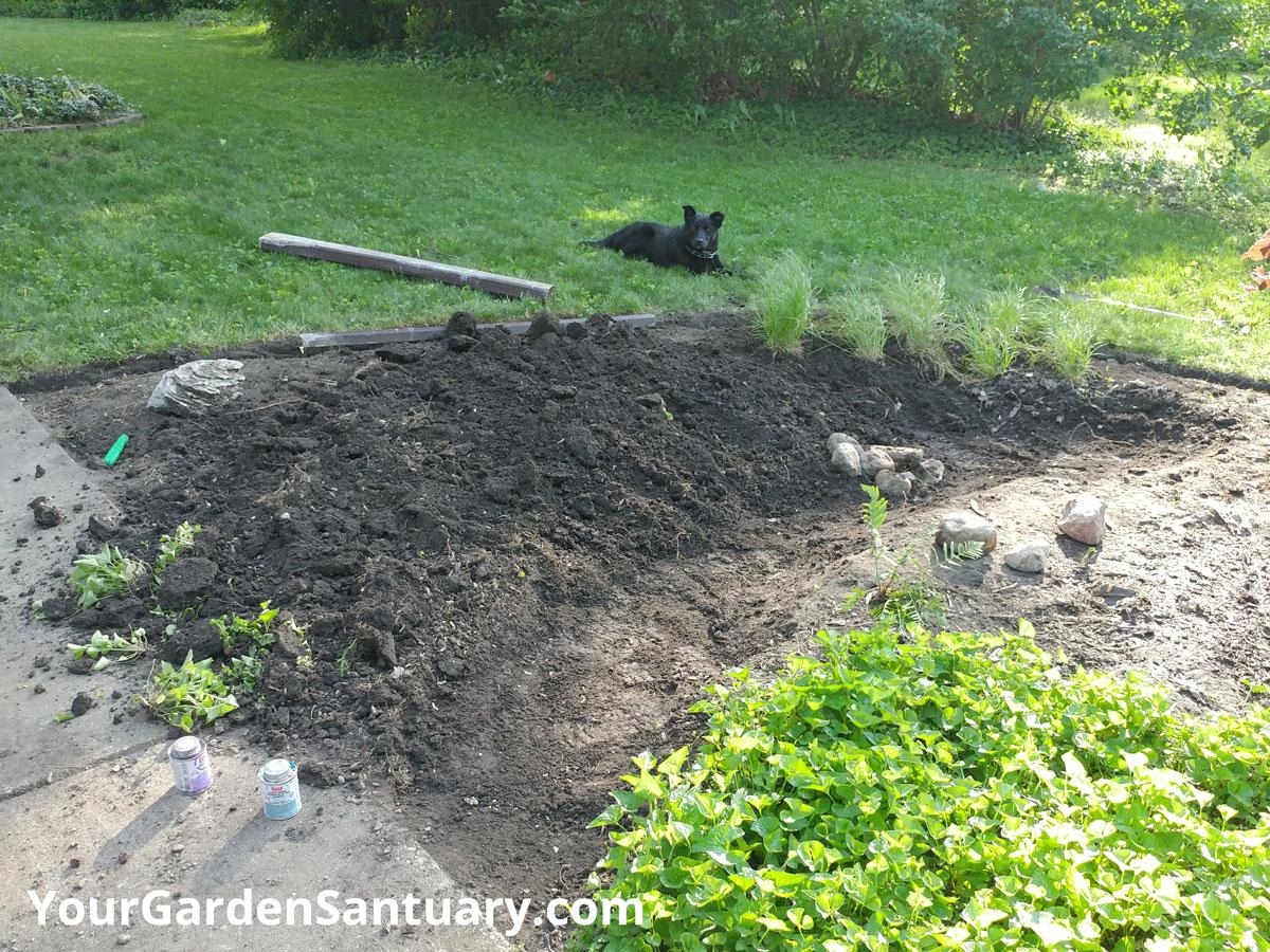 Rain Garden Swale
