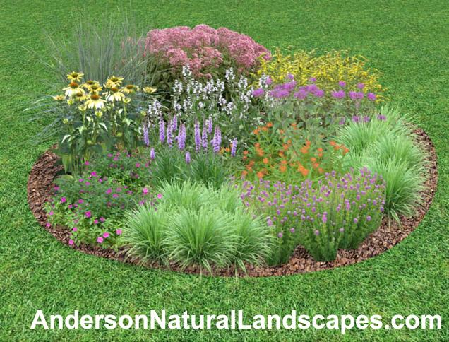 Pollinator garden image