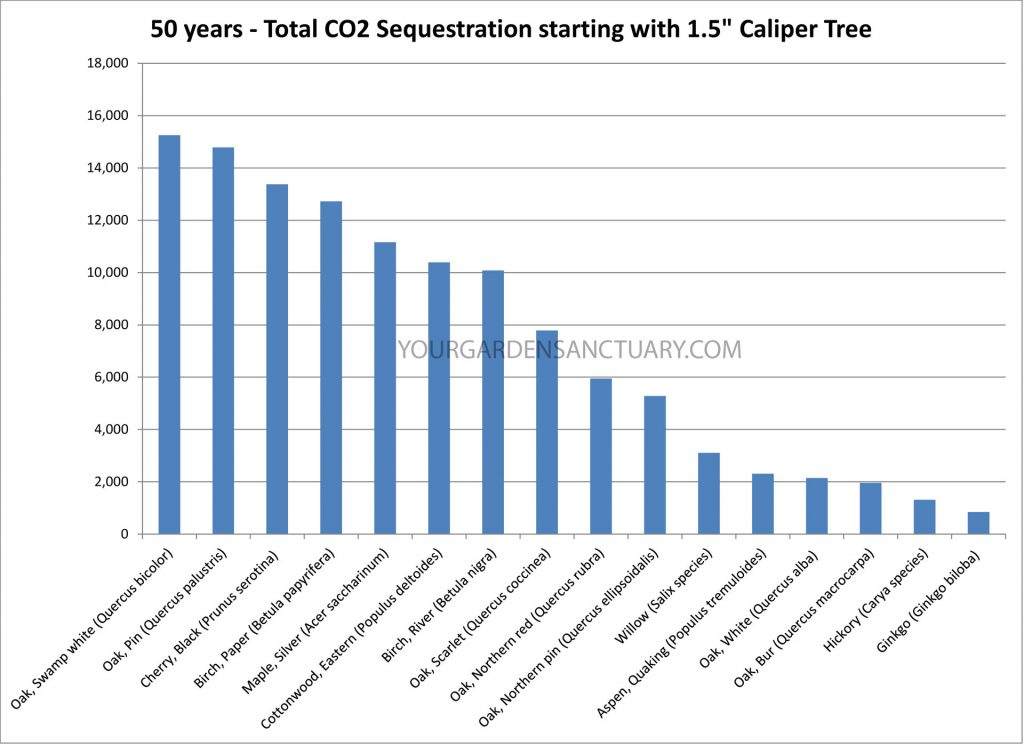 Carbon Sequestration Rates for tree species